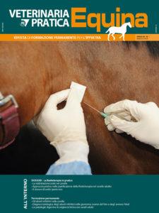 veterinaria pratica equina